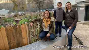 Jardin. Un potager et du bonheur partagés à Oissel, en Seine-Maritime - Franceinfo
