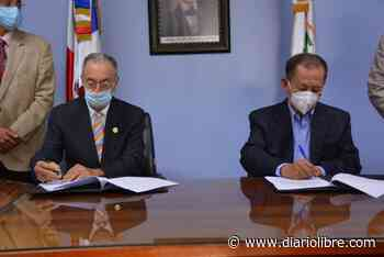 Firman acuerdo para industrializar la madera de coco y el bamb - Diario Libre