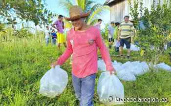 Piscicultores de Nátaga recibieron apoyo para sus unidades productivas - Noticias