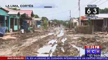 En medio del lodo viven vecinos de la col. Nuevo San Juan en #LaLima - hch.tv