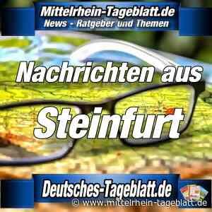 Kreis Steinfurt - Corona-Aktuell 11.01.2021: 7-Tage-Inzidenz der Corona-Neuinfizierten im Kreis Steinfurt auf 137 gesunken – 41 Neuinfektionen zum Vortag › Von Stadt-News - Stadtnachrichten Bonn - Mittelrhein Tageblatt