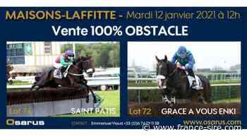 EN DIRECT : la vente 100% obstacle d'Osarus à Maisons-Laffitte le 12/01 à 12H00 - France-sire