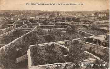 Restauration des Murs-à-Pêches de Montreuil - Affiches Parisiennes
