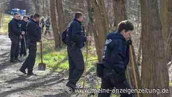 Vermisstenfall Rebecca Reusch: Zeugin hat etwas im Wald beobachtet