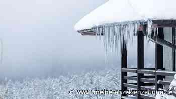 Wetter: Experten rechnen mit Kälte-Einbruch im Januar