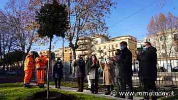 Centocelle, un albero in piazza dei Gerani per ricordare Federica Stiffi