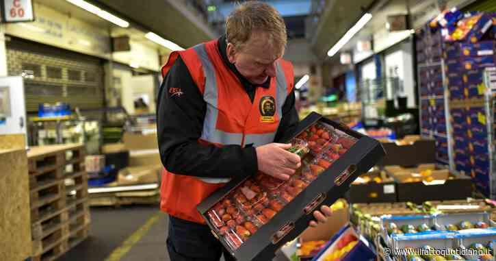 Frutti di mare bloccati alla dogana e scaffali vuoti nei supermercati: gli effetti di Brexit in Uk