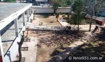 Denuncian indiscriminada tala de árboles en Escuela del Barrio Pango - RADIO FÉNIX 95.1