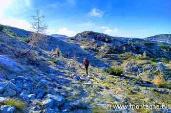 Pieve di Cadore. Escursionista scivola e precipita per 200 metri - Montagna.tv