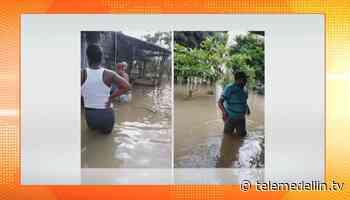 Fuertes lluvias provocaron inundaciones en zona rural de Chigorodó - Telemedellín