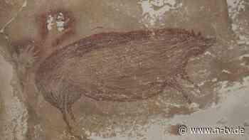 Fund in Indonesien: Älteste Höhlenmalerei der Welt entdeckt