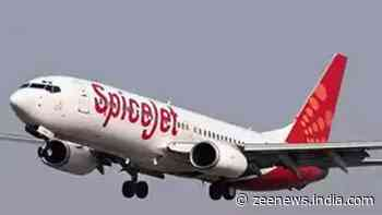 SpiceJet Befikar Sale! Domestic tickets starting at just Rs 899: Details here