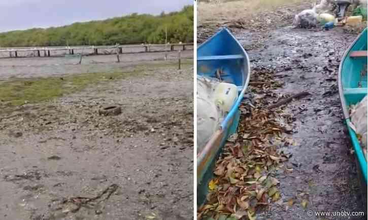 ¿Y el agua? Desaparece Laguna de Alvarado, en Veracruz - Uno TV Noticias