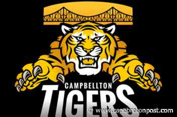 Campbellton Tigers player tests positive for COVID-19 - Cape Breton Post