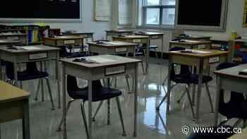 Windsor-Essex schools will remain closed into February under new COVID-19 order - CBC.ca