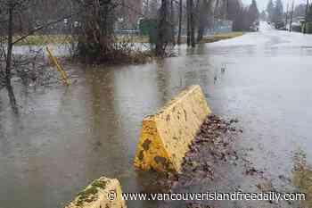 Heavy rain brings flooding to Lake Cowichan - vancouverislandfreedaily.com