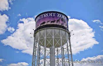 After years of leadership in animal welfare, Detroit Zoo director Ron Kagan to retire - Michigan Radio