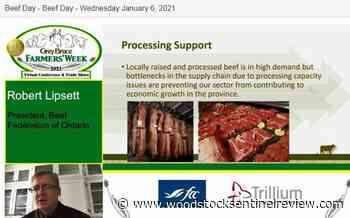 Processing capacity continues to weigh on Ontario beef industry - Woodstock Sentinel Review