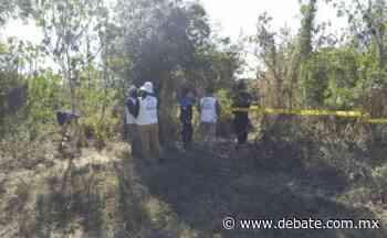 Por llamada anónima hallan osamenta en la carretera Culiacán - Los Mochis, en Culiacán - Debate
