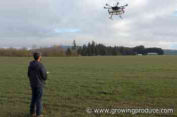 Precision Ag Use on the Rise With More Fruit Growers