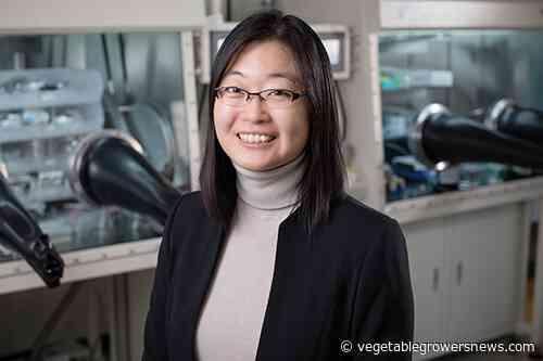 Professor receives NASA Early Career award to help astronauts grow vegetables