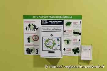 Loiret : à Jargeau, des boîtes aux lettres pour lutter contre les violences infantiles - France 3 Régions