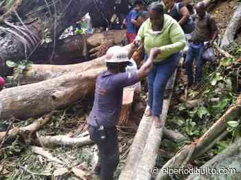 Reabren vía a Ocumare de la Costa luego de derrumbes - El Periodiquito