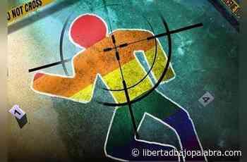 Coatzacoalcos, Minatitlán, Poza Rica y Papantla municipios donde se acentuó la mayor cantidad de crímenes de odio - Libertadbajopalabra.com