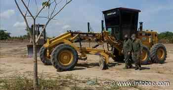 Investigan tala de 1.500 árboles en lote de Malambo, Atlántico - infobae