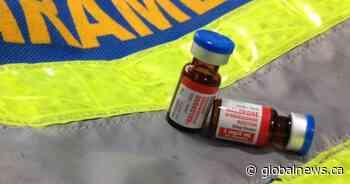 Weyburn, Sask., police report 2 suspected drug overdose deaths, 1 revival