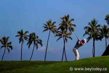 Nick Taylor gets a break and a birdie and leads Sony Open