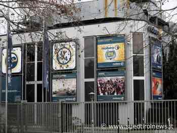 """RTL-""""Dschungelshow"""" in Köln gestartet - Suedtirol News"""