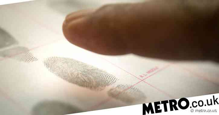 Criminal probes 'compromised' after human error wipes out 400,000 police records