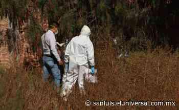 Fiscalía investiga homicidio en Villa de Reyes | San Luis Potosí - El Universal