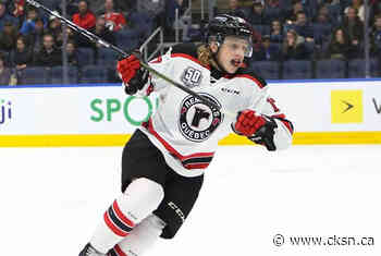 Schives Traded To Baie-Comeau Drakkar - Chatham-Kent Sports Network