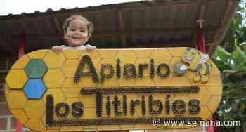 La alianza que está transformando al municipio de Titiribí - Semana.com