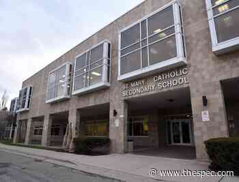 Former Hamilton Catholic school employee under investigation following discovery of hateful, conspiratorial comments online - TheSpec.com