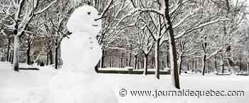 Où est le plus beau bonhomme de neige?