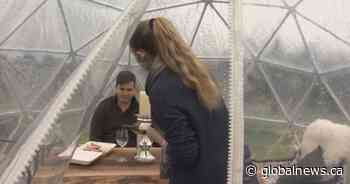 Fraser Valley winery adapts to COVID-19 with wine tasting domes