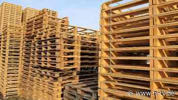 So wichtig wie Toilettenpapier: Holzpaletten-Norm bremst Post-Brexit-Handel