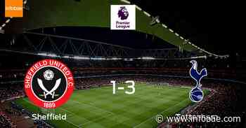 Tottenham Hotspur se lleva el triunfo tras ganar 3-1 a Sheffield Utd - infobae