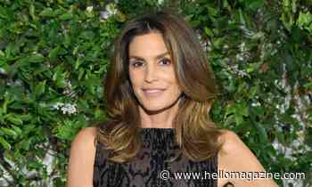 Fans call Cindy Crawford and Rande Gerber 'couple goals' after seeing rare selfie