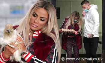 Katie Price makes friends with a chicken at farm with Carl Woods