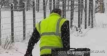 Asda driver hailed a 'hero' by shoppers as he battles snow to make delivery
