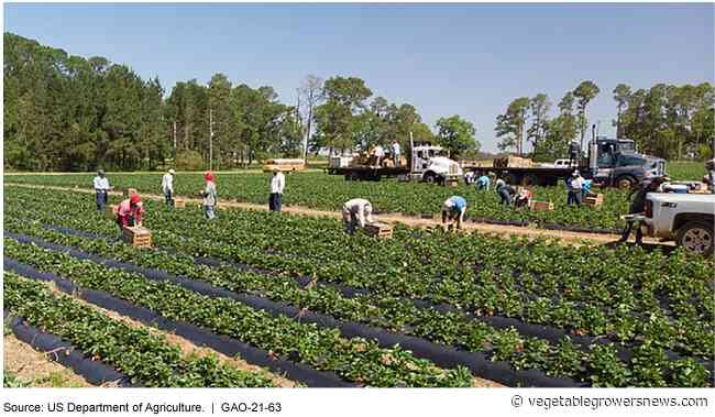 More info needed to protect workers from pesticide exposure, GAO says