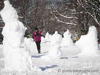 Allison Hanes: Why does everyone want to build a snowman?