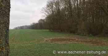 Erkelenz: Bürgerwald entsteht im Wahnenbusch - Aachener Zeitung