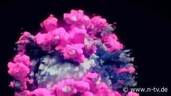 Auf Basis von Mikroskopiedaten: Forschern gelingt Foto des Coronavirus