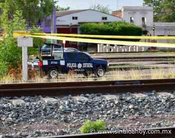 Localizan hombre sin vida en Guamuchil, amaneció sobre las vías del tren. - Sinaloahoy