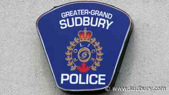 Most police calls aren't for crimes, so why not better fund community services, BLM Sudbury says
